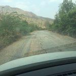 IMG_0768-panarha-rajasthan